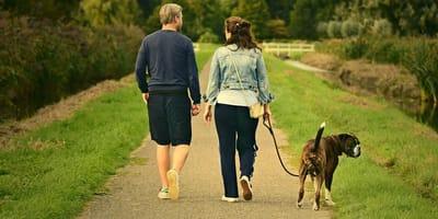 Una coppia passeggia con un cane