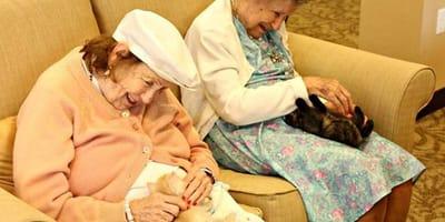 Due anziane coccolano due gattini
