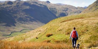 Frau mit Rucksack und Hund in hügeliger Landschaft