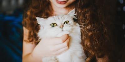Gatto bianco in braccio ad una ragazza