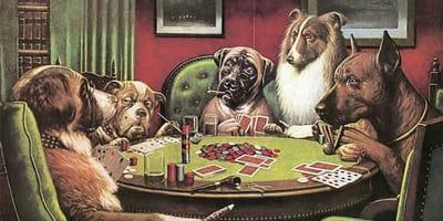 pintor perros póquer Coolidge