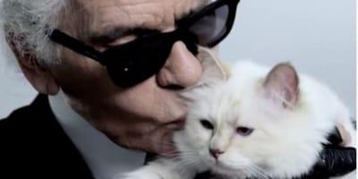 Lo stilista Lagerfeld con il suo gatto