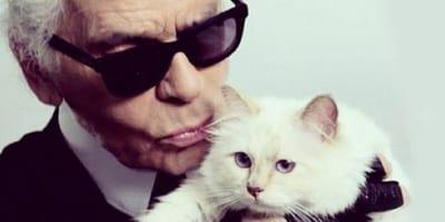 Karl Lagerfeld z kotką Choupette