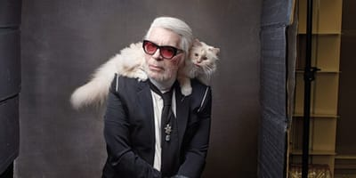 Everyone feels sorry for Karl Lagerfeld's cat Choupette