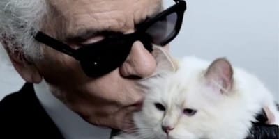 Lagerfeld and his beloved cat