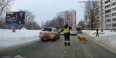Policjant i pies