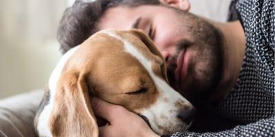 Un uomo e il suo cane si fanno le coccole