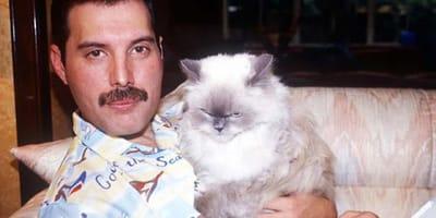 Freddie mercury con su gato