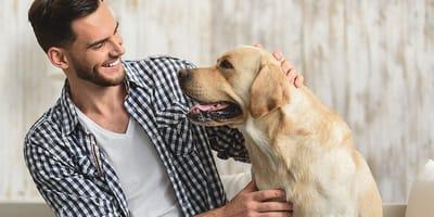 Aprende cómo saludar un perro correctamente