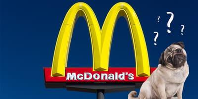 McDonald's Logo und Hund