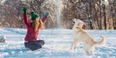 So wird der Winterurlaub mit Hund zur besten Zeit des Jahres