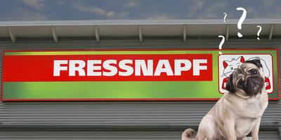 Hund und Fressnapf-Logo und Fragezeichen