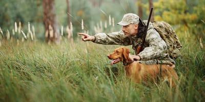 Jagdhund und Jäger