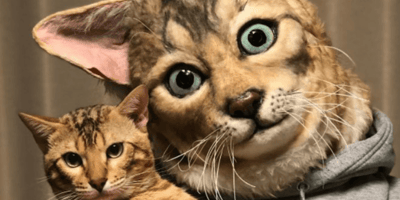 Spot the difference: cat masks that look just like your little terror.