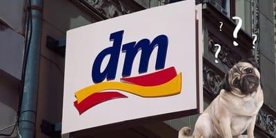 Hund vor DM Logo