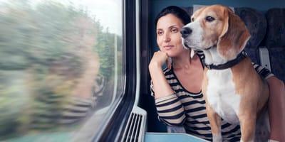 Frau mit Hund im Zug