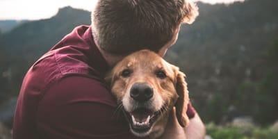 Psi Tinder pomaga psom ze schroniska znaleźć nowy dom!