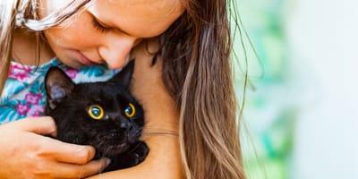 Jak przekonać rodziców do kota? Mamy kilka porad!