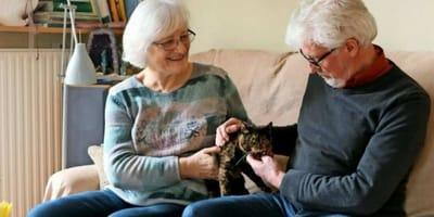 un gattino con una coppia anziana