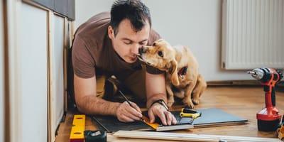 DIY-Ideen für Hund und Katze