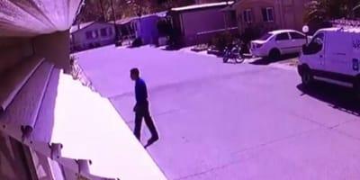 Si avvicina ad una casa e poi scappa: le telecamere filmano tutto (Video)