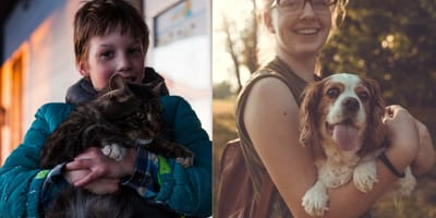 Dogs love their owners more than cats