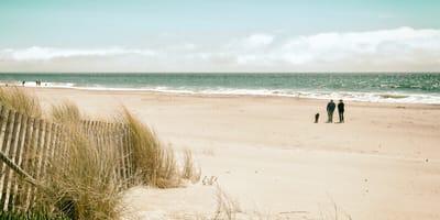 Paar mit Hund an der Nordsee