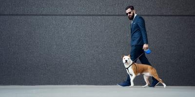 Uomo d'affari con un cane