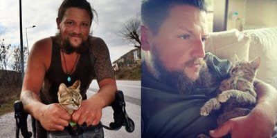 Cyclists bikes the world with kitten