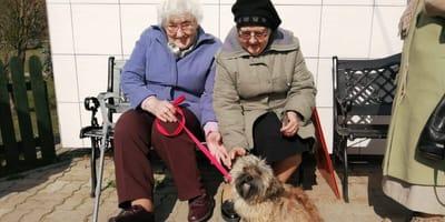 Seniorzy w bydgoskim schronisku
