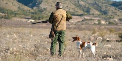 maltrato abandono perros caza