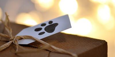 Geschenk mit Hundepfote