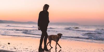 mujer paseando a perro en la playa