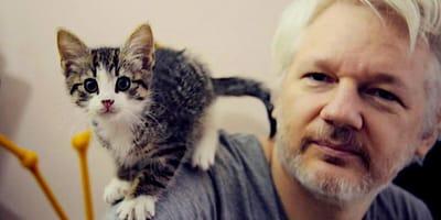 Julien Assange mit Katze