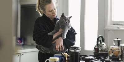 6 home remedies to soothe a stressed cat