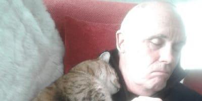 Mann mit Katze