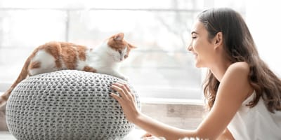 7 things that will help you understand your cat