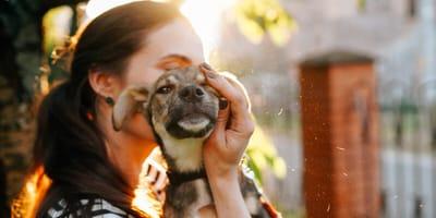 Beneficios e inconvenientes de adoptar un perro