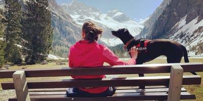 Urlaub mit Hund im Allgäu