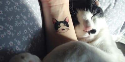 Tatuajes de silueta de gato para inspirarte en 2020