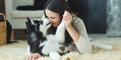Día de las madres: 19 cosas que enfrentan las mamás de perros