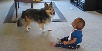 Pies to najlepszy przyjaciel dziecka. Ta urocza scena rozgrzeje Wasze serca! (VIDEO)
