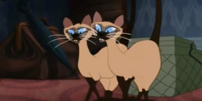 Siamese Cat Song from Lady and the Tramp movie