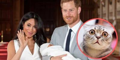 meghan markle e il principe harry con il royal baby
