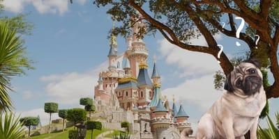 Dürfen Hunde ins Disneyland Paris?