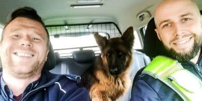 perro con policías