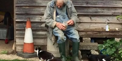 80-year-old man sits in front of shed with cats