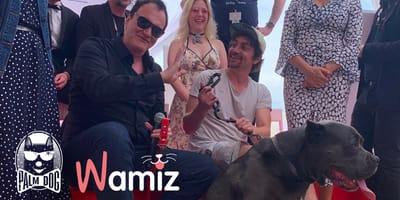Festiwal w Cannes: pitbull grający w filmie Quentina Tarantino ze statuetką Wamiz Palm Dog!