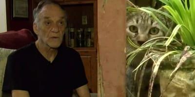 hombre adopta 40 gatos