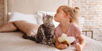 mejor gato con niños